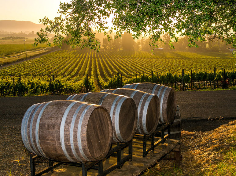 Body soul wine country getaway traditional home for Best time to visit napa valley wine country