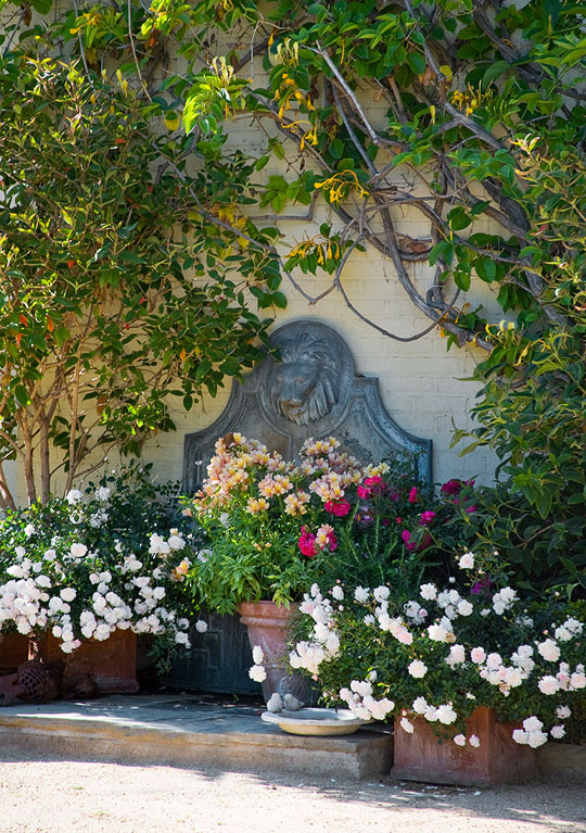 Romantic garden for a young family traditional home for Jardin romantico
