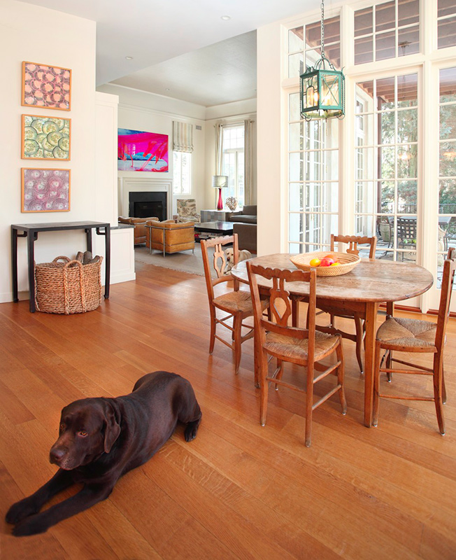 Decorate A Picture: Decorating Ideas: Making A Pet-Friendly Home