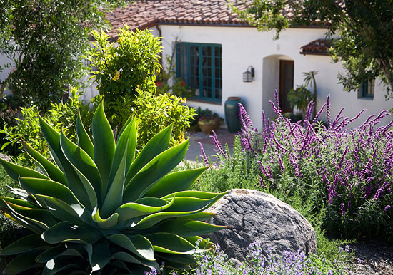 Landscaping design tips from margie grace traditional home for Garden design ideas in spain