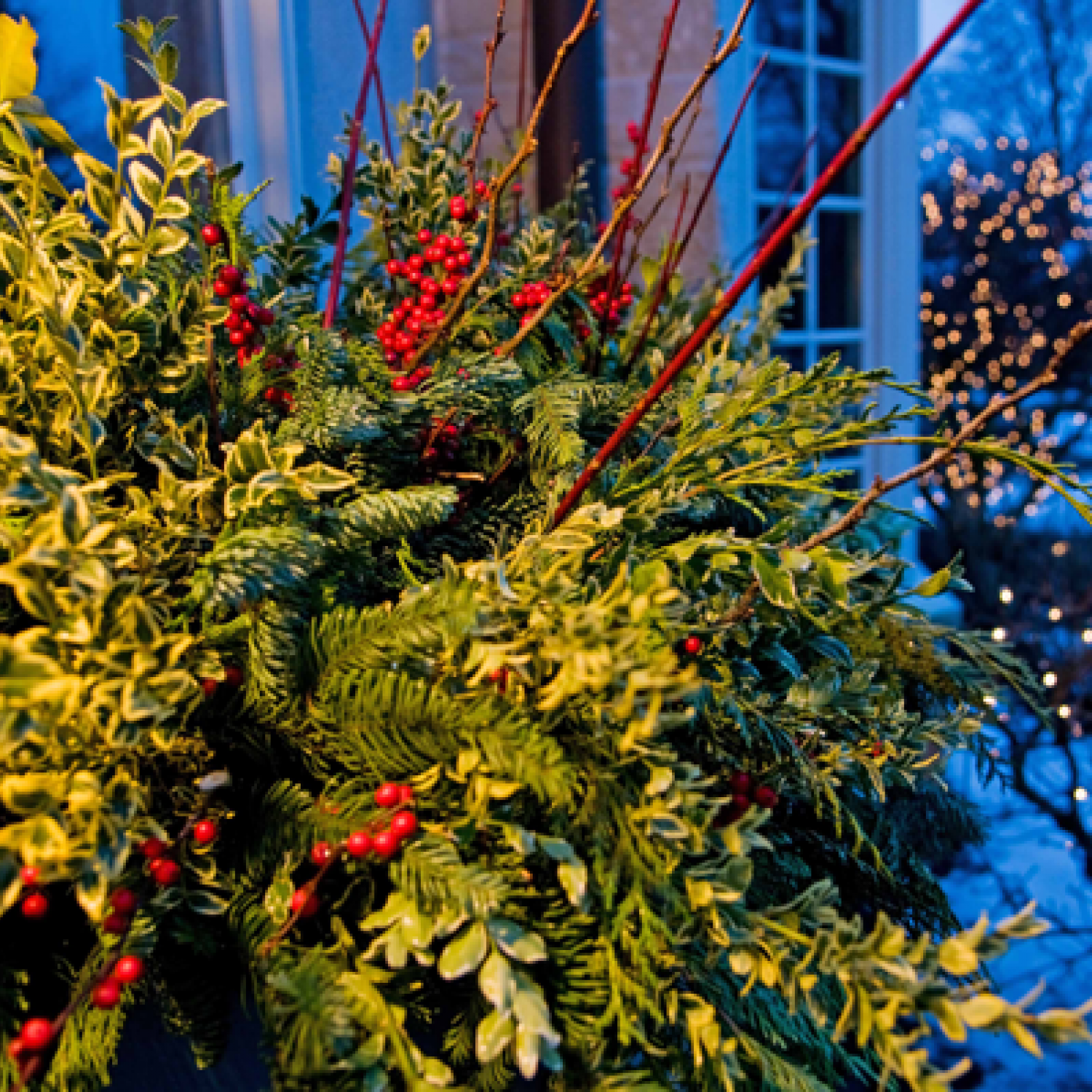 Holiday Outdoor Decorating Tips from Mariani Landscape ...