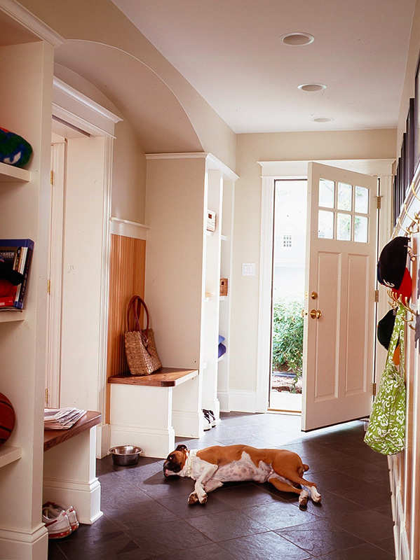 Decorating Ideas Making a Pet Friendly Home